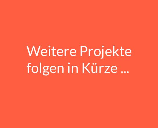 feinsdesign_sabinehaselsteiner_weitere-projekte_thumb